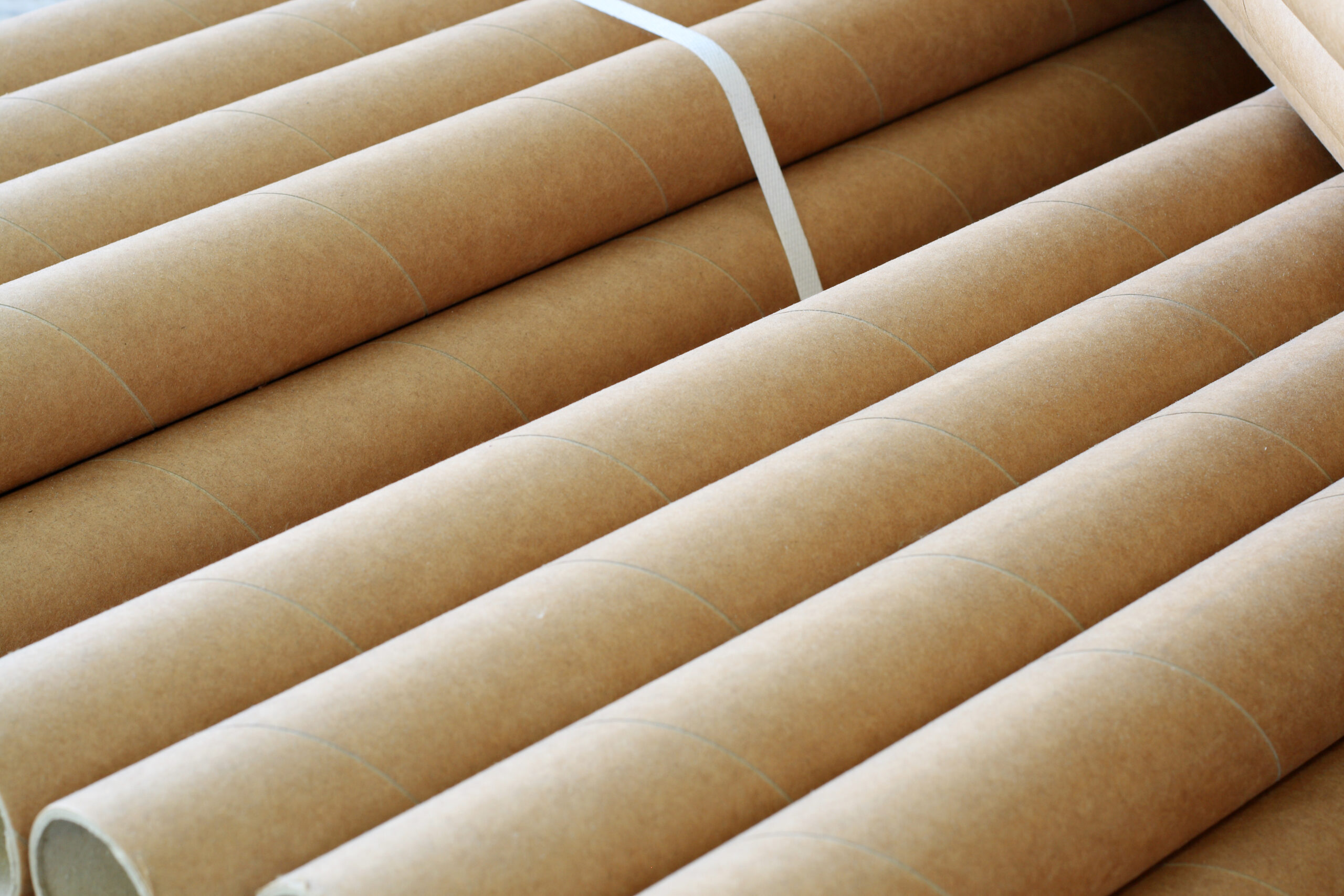 close-up of long brown paper tubes